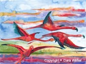 Sunset Flight copyright © 2003 Dara Walter